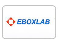 Denver IT Consulting by Eboxlab